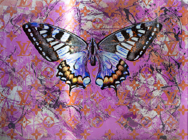 Colorful Butterfly on Pink